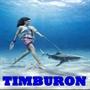 timburon59