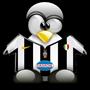 pinguina51